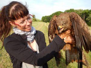 Projektmitarbeiterin Jana Müller vom LPV Mittelthüringen mit einem Schwarzmilan