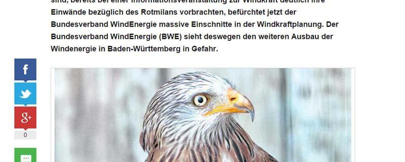 Windenergie contra Rotmilan