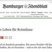 Hamburger Abendblatt: Ein besseres Leben für Rotmilane